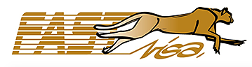 fast-visa-logo