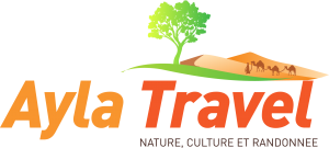 ayla-travel-logo-v2