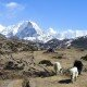 ©nepalauthentictrek.photo4