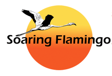 soaring-flamingo-photo2