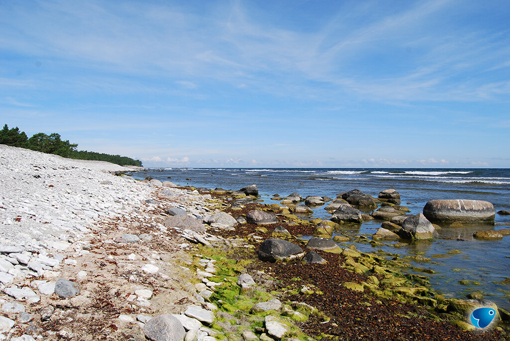 côtes suédoises