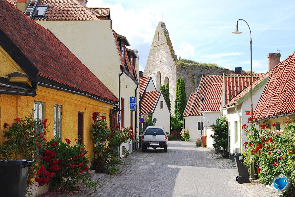 rue sur Gotland en Suède