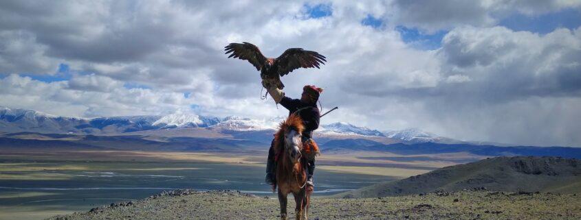 cavalier mongol avec un rapace
