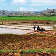 Paysage rural de Madagascar