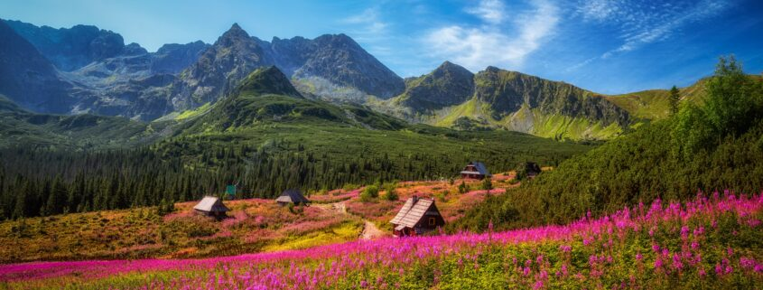 Góry, Karpaty, Tatry, Polska