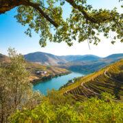 Balade aux vignobles de la Vallée du Douro, Patrimoine Mondial Unesco